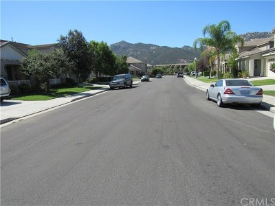 Temecula Single Family Home For Sale: 31971 Whitetail Lane