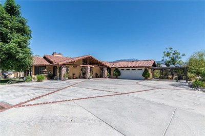 Hemet Single Family Home For Sale: 44518 Mayberry Avenue