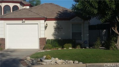 Canyon Lake, Lake Elsinore, Menifee, Murrieta, Temecula, Wildomar, Winchester Rental For Rent: 30245 White Wake Drive