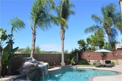 Temecula CA Single Family Home For Sale: $695,000