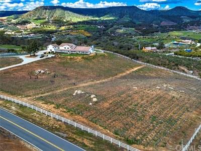 Temecula Single Family Home For Sale: 23920 La Vella Road