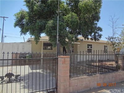 North Hollywood Single Family Home For Sale: 11632 Stagg Street