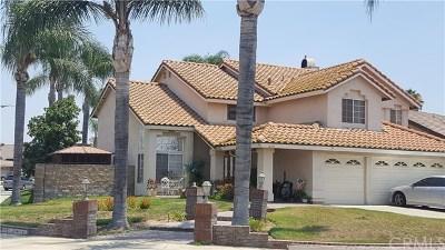 Ontario Single Family Home For Sale: 3699 S Grey Fox Lane