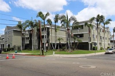 Santa Ana Multi Family Home For Sale: 331 E Chestnut Drive