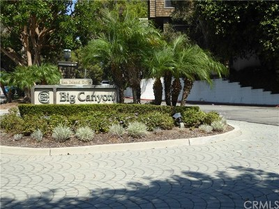 Newport Beach Condo/Townhouse For Sale: 53 Sea Island Drive