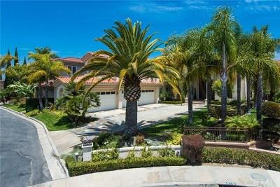 Laguna Niguel Single Family Home For Sale: 6 Vista Montemar