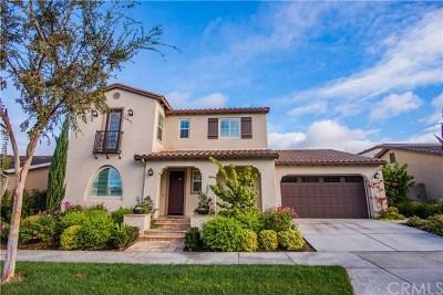 Irvine Single Family Home For Sale: 123 Prospect