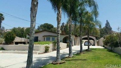Norco Single Family Home For Sale: 2527 Hillside Avenue