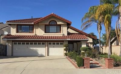 Diamond Bar Single Family Home For Sale: 911 Wynnewood Drive
