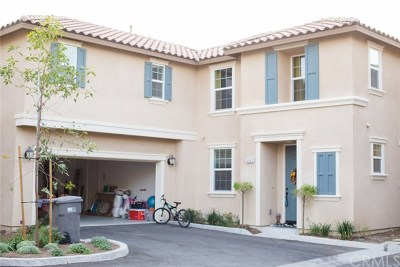 Eastvale Single Family Home For Sale: 6083 Rosewood Way