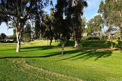 Phillips Ranch Single Family Home For Sale: 42 Falcon Ridge Drive