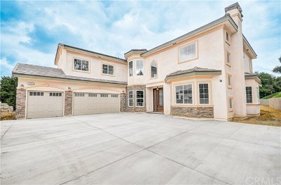 Chino Hills Single Family Home For Sale: 1889 Ginseng Lane