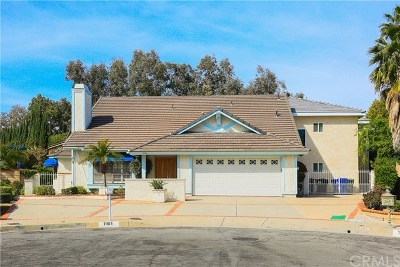 Rowland Heights Single Family Home For Sale: 1901 Tambor Court