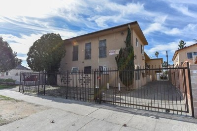 North Hollywood Multi Family Home For Sale: 6623 Lemp Avenue