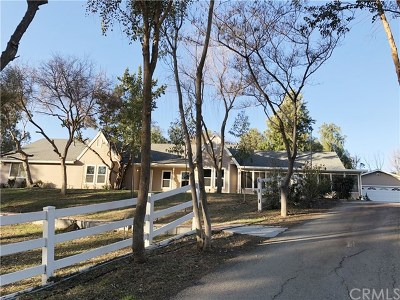 Temecula Single Family Home For Sale: 39340 Calle Contento