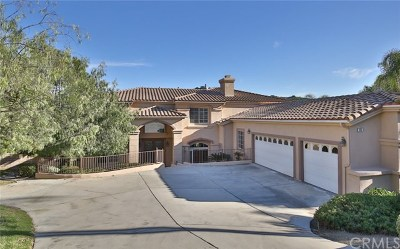 Chino Hills Single Family Home For Sale: 1451 Westridge Way
