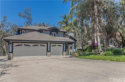 Rancho Cucamonga Single Family Home For Sale: 5188 Hermosa Avenue