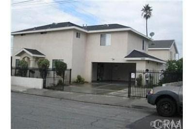 Placentia Single Family Home For Sale: 1603 La Paloma Avenue