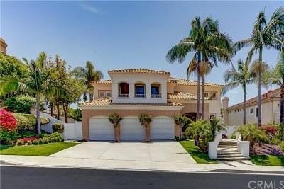 Laguna Niguel Single Family Home For Sale: 10 Gray Stone Way