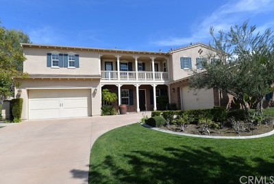 Chino Hills Single Family Home For Sale: 16165 Castelli Circle