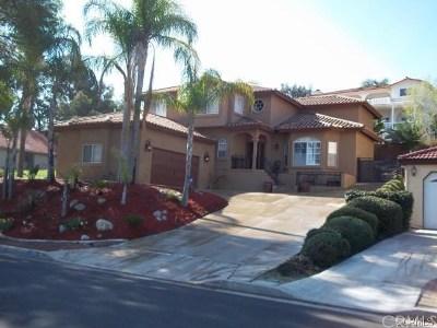 Canyon Lake Single Family Home For Sale: 22931 Gray Fox Drive