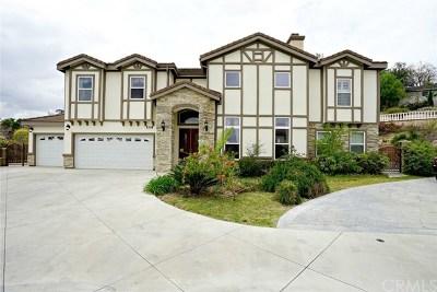 Walnut Single Family Home For Sale: 389 Avenida Esplendor