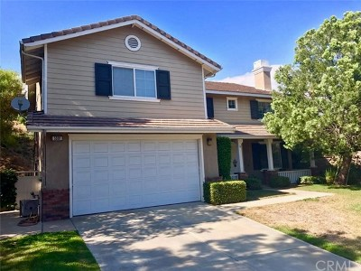 Chino Hills Single Family Home For Sale: 5536 Pine Avenue