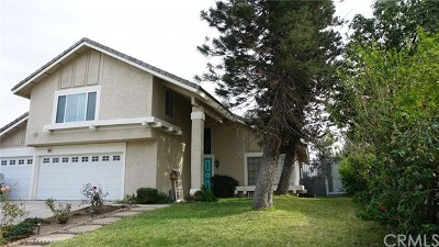 Corona Single Family Home For Sale: 909 Nottingham Drive