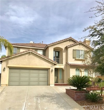 Lake Elsinore Single Family Home For Sale: 21 Via Del Renal Court