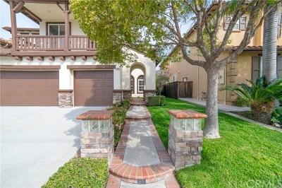 Orange Single Family Home For Sale: 6993 E Villanueva Drive