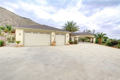 Hemet Single Family Home For Sale: 23480 Beech Street