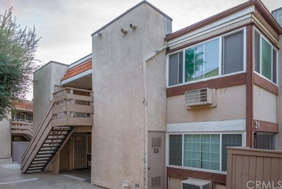 Placentia Condo/Townhouse For Sale: 212 S Kraemer Boulevard #2408