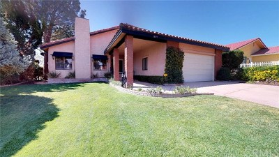 Victorville Single Family Home For Sale: 18177 Pahute Road