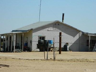 Adelanto Single Family Home For Sale: 9400 Mojave Dr