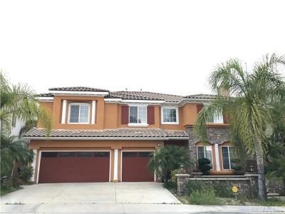 Walnut Single Family Home For Sale: 1305 Bellavista Drive