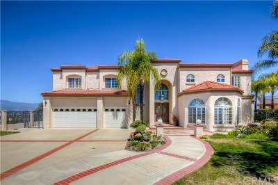 Single Family Home For Sale: 202 Rebecca Drive