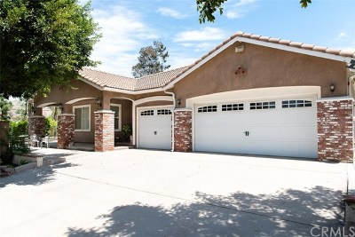 Norco Single Family Home For Sale: 240 Sixth Street