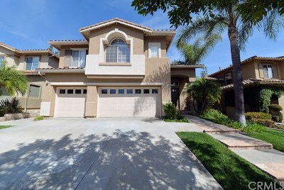 Tustin Single Family Home For Sale: 11010 Hiskey Lane