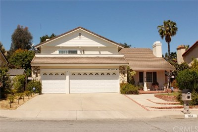 Rowland Heights Single Family Home For Sale: 1853 Calle Madrid
