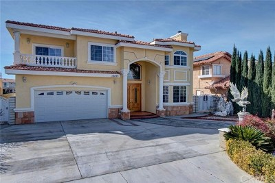 Victorville Single Family Home For Sale: 18099 Lakeview Drive