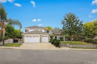 Walnut Single Family Home For Sale: 22120 Pommel Court