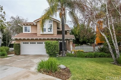 Chino Hills Single Family Home For Sale: 14714 Amigos Road
