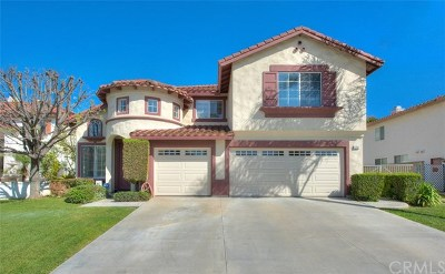 Chino Hills Single Family Home For Sale: 4701 Torrey Pines Drive