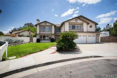 Chino Single Family Home For Sale: 3601 Arvidson Court