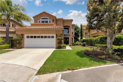 Rancho Santa Margarita Single Family Home For Sale: 10 Minikahda