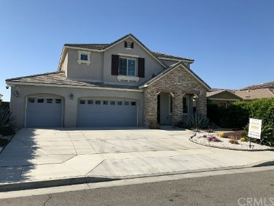 Lake Elsinore Single Family Home For Sale: 29162 Edgewood Dr