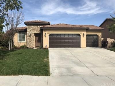 Wildomar Single Family Home For Sale: 35670 Dulock Road