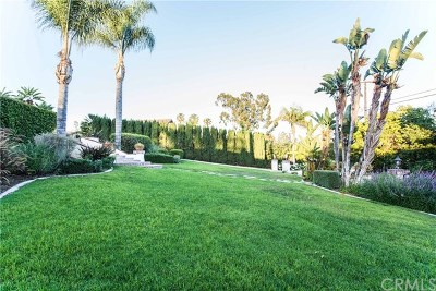 Yorba Linda Single Family Home For Sale: 19175 Via Del Caballo