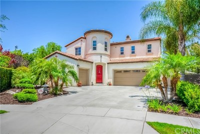 Chino Single Family Home For Sale: 6880 Piedmont Street