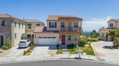 Yorba Linda Single Family Home For Sale: 18100 Spyglass